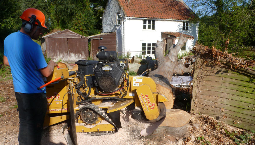 conservation_company_tree_surgery_natural_ponds_east_anglia_078