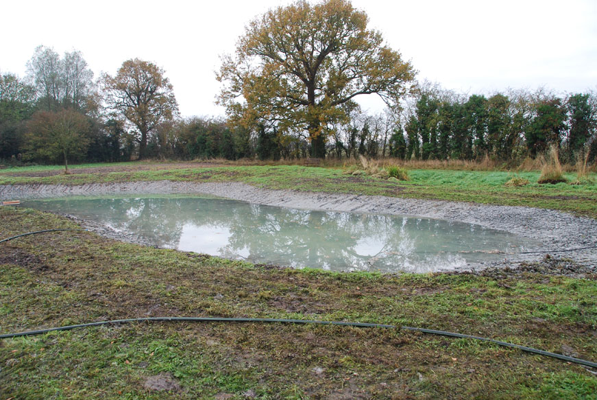 conservation_company_tree_surgery_natural_ponds_east_anglia_005