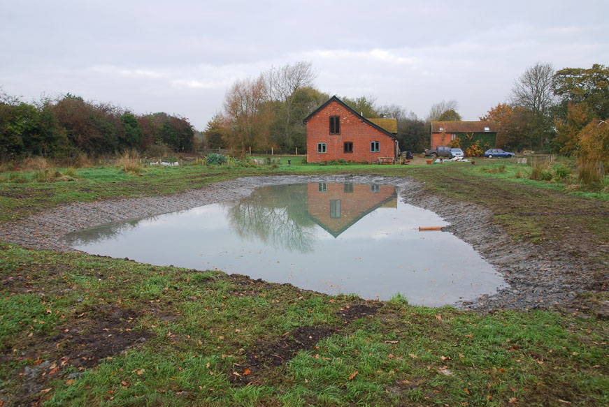 conservation_company_tree_surgery_natural_ponds_east_anglia_006