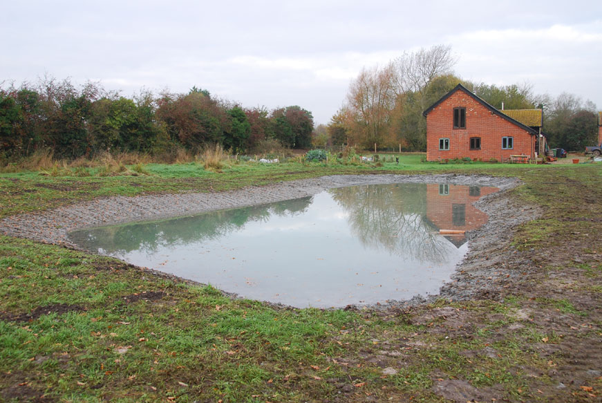 conservation_company_tree_surgery_natural_ponds_east_anglia_007