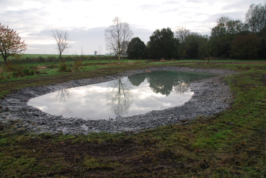 conservation_company_tree_surgery_natural_ponds_east_anglia_008