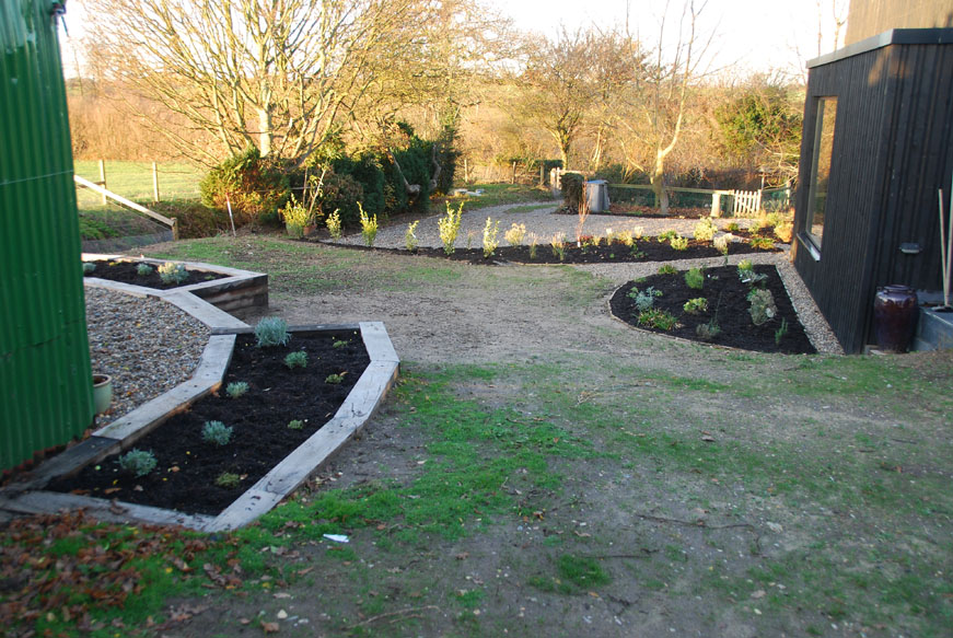 conservation_company_tree_surgery_natural_ponds_east_anglia_013