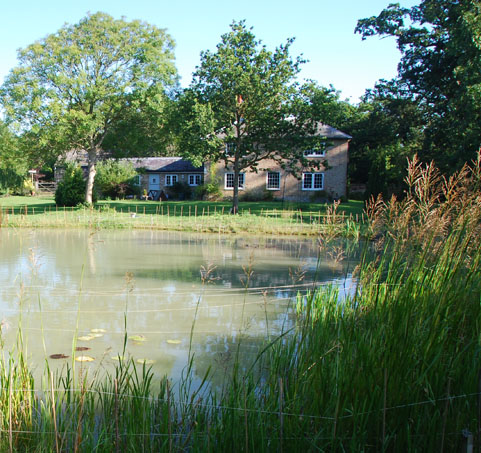 conservation_company_tree_surgery_natural_ponds_east_anglia_017